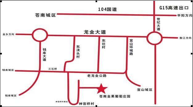 苍南大道线路图