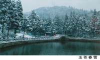 玉苍山雪景